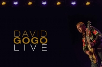 David Gogo launch banner 381 960X640