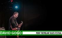 DAvid-Gogo-banner-show-