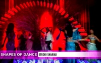 2019-shapes-of-dance-site-post-banner
